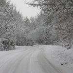 Sigord v zime